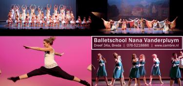 Logo Balletschool Nana Vanderpluym